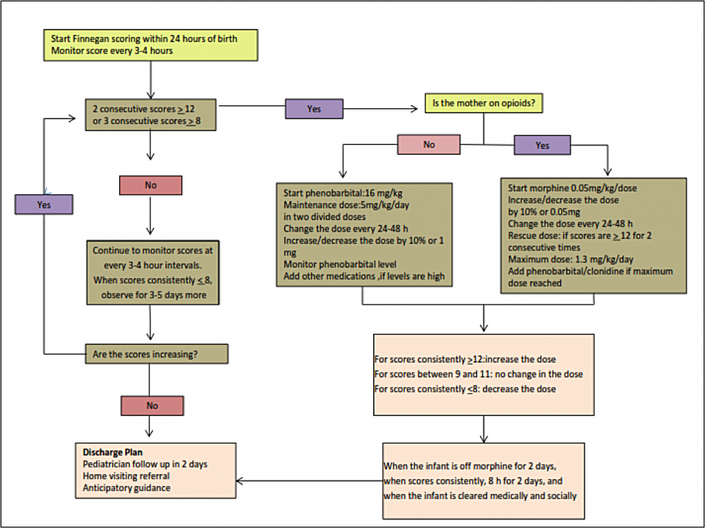 "<strong><em>Figure 1</em></strong><strong>. A sample hospital management plan for neonates with NAS. </strong>Adapted from Kocherlakota (2014)<sup><a href=""#_ftn6"" name=""_ftnref6"">[6]</a></sup>"